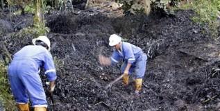 Defendiendo la naturaleza: Retos y obstáculos en la implementación de los derechos de la naturaleza Caso río Vilcabamba