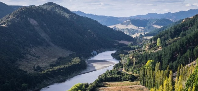 Si ríos y humanos comparten el mismo status legal, debemos respetar sus derechos