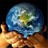 Hacia la Declaración Universal de los Derechos de la Naturaleza