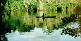 Derechos de la Naturaleza en Ecuador: balance de una década