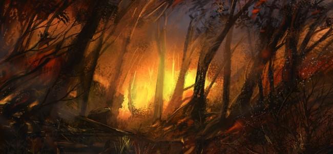 La naturaleza sofocada: derechos, ambiente y pueblos indígenas