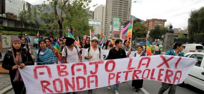 La protección de los derechos de la naturaleza no se cumple a plenitud: Ecuador