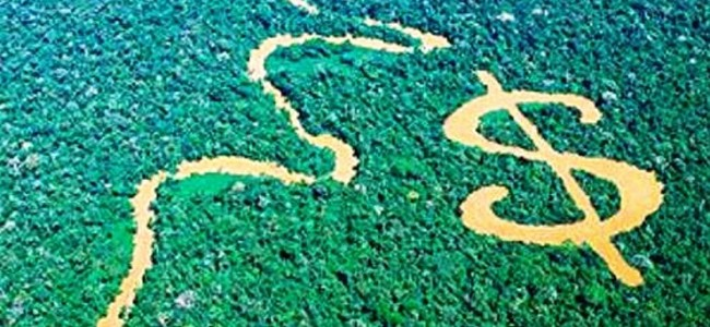 Ecuador insta a legislar sobre derechos de naturaleza contra cambio climático