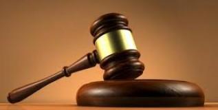 Los derechos de la naturaleza en la jurisprudencia constitucional ecuatoriana